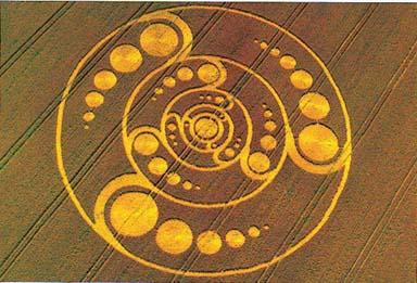 Resultado de imagem para circulos nas plantações