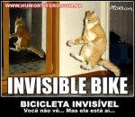 invisivel_1